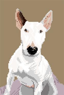 http://sd-5.archive-host.com/membres/images/164353825412355948/bull_terrier_4.jpg
