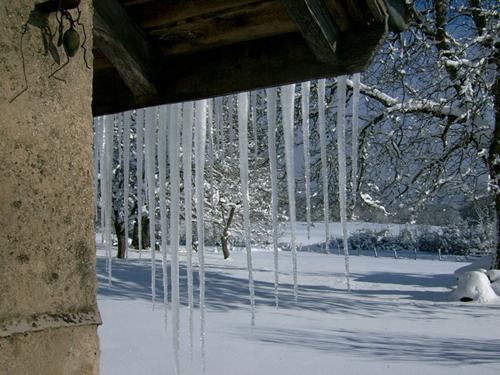http://sd-5.archive-host.com/membres/images/164353825412355948/neige_jardin.jpg