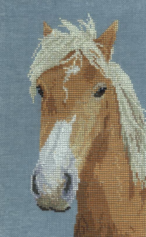 http://sd-5.archive-host.com/membres/images/164353825412355948/poney_haflinger_2_ob.jpg