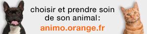 animaux-sos.jpg