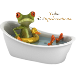 grenouille1.png